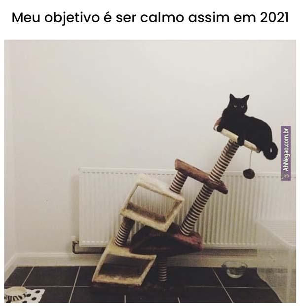 meme 35 16