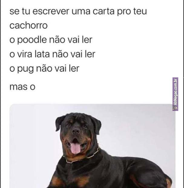 meme ahnegao 55