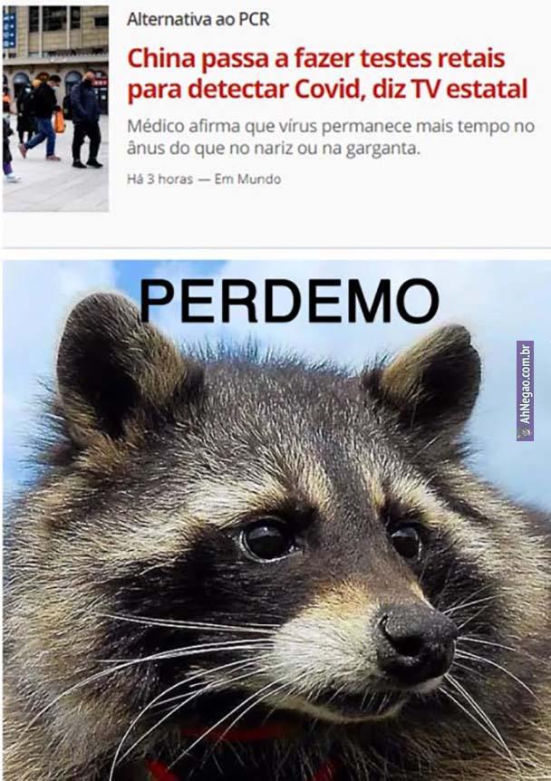 meme quinta 19 1