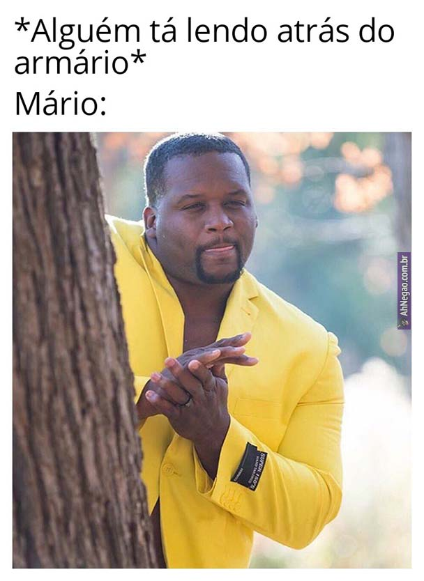 seg meme 37